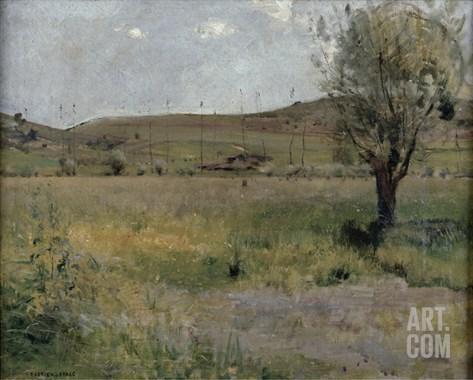 Summer Landscape Stretched Canvas Print