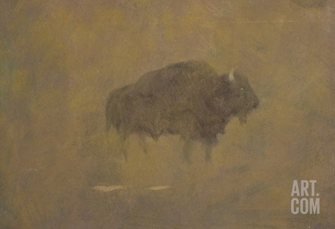 Buffalo in a Sandstorm (Oil on Paper Mounted on Board) Stretched Canvas Print