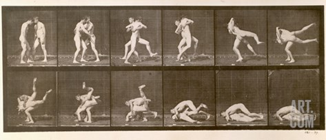 Two Men Wrestling, Plate 347 from 'Animal Locomotion', 1887 (B/W Photo) Stretched Canvas Print