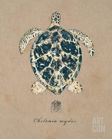 Vintage Linen Tortoise Stretched Canvas Print