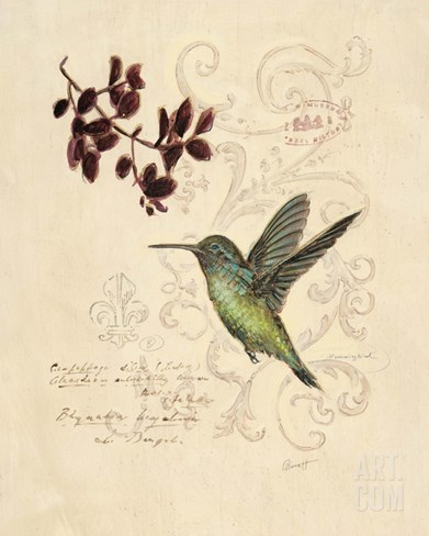 Filigree Hummingbird Stretched Canvas Print