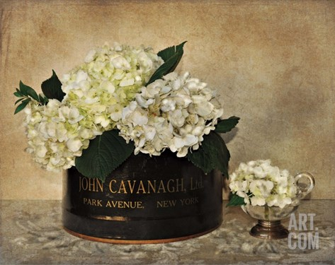 Park Avenue Hydrangea Stretched Canvas Print