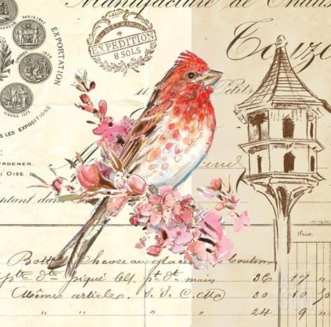 Bird Sketch 1 Stretched Canvas Print