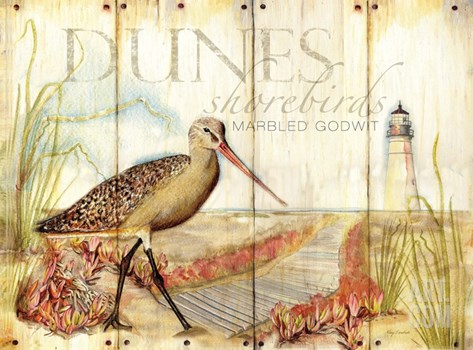 Dunes Shorebird Stretched Canvas Print