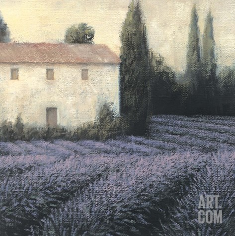 Lavender Field Detail Stretched Canvas Print