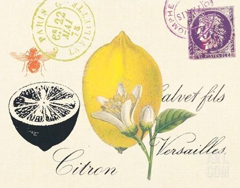Lemon Letter Stretched Canvas Print