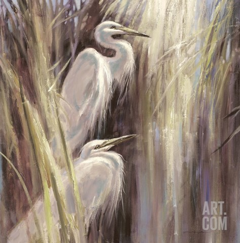 Seaside Egrets Stretched Canvas Print