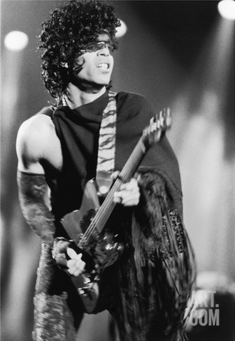 Prince Stretched Canvas Print