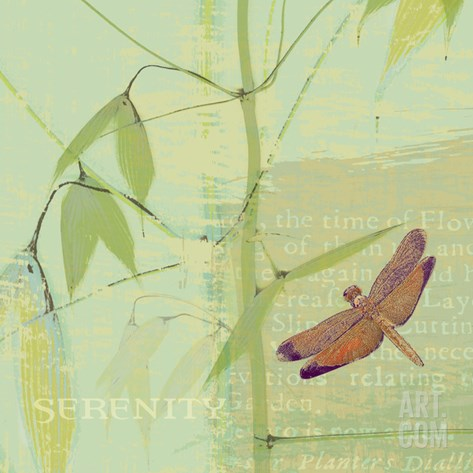 Serenity Stretched Canvas Print