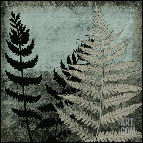 Illuminated Ferns V Stretched Canvas Print