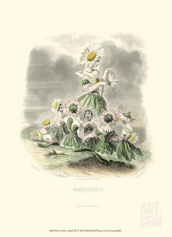 Le Fleur Animé III Stretched Canvas Print