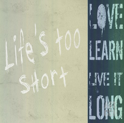 Life's Too Short Stretched Canvas Print