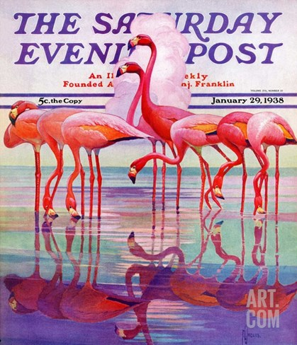 """Pink Flamingos,"" Saturday Evening Post Cover, January 29, 1938 Stretched Canvas Print"