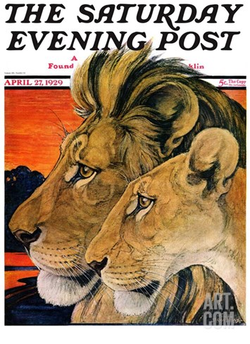 """""""Lion Pair,"""" Saturday Evening Post Cover, April 27, 1929 Stretched Canvas Print"""