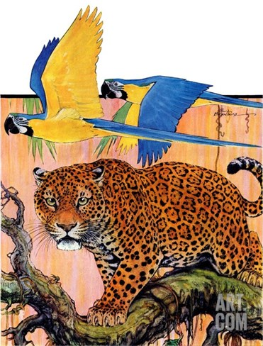 """Leopard and Parrots in Jungle,""September 2, 1933 Stretched Canvas Print"