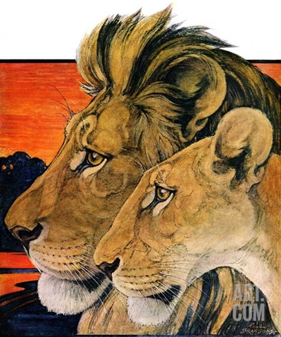 """Lion Pair,""April 27, 1929 Stretched Canvas Print"