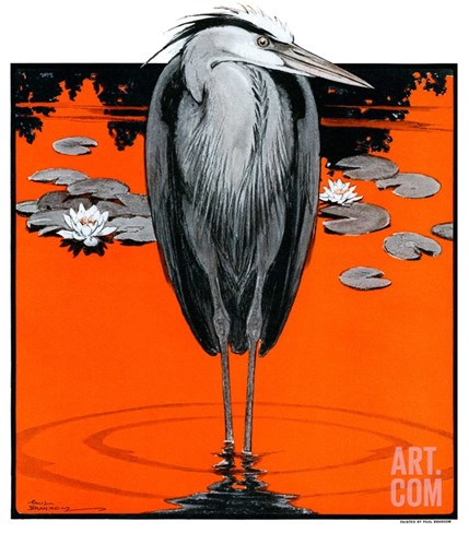 """Crane and Lilly Pads,""May 3, 1924 Stretched Canvas Print"