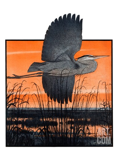 """Marsh Bird,""October 3, 1925 Stretched Canvas Print"