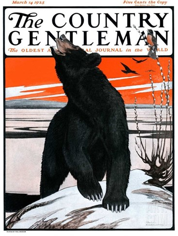 """Bear and Robin Welcome Spring,"" Country Gentleman Cover, March 14, 1925 Stretched Canvas Print"
