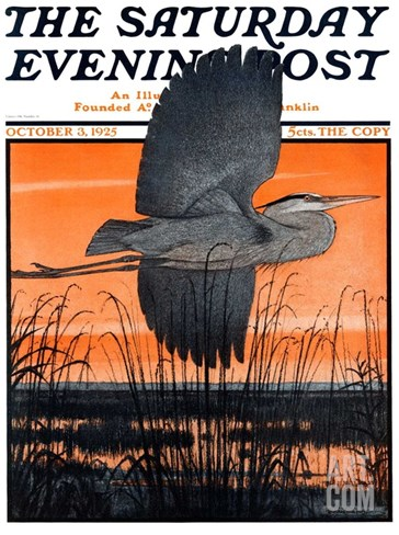 """Marsh Bird,"" Saturday Evening Post Cover, October 3, 1925 Stretched Canvas Print"