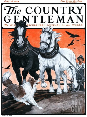 """Plowing the Field,"" Country Gentleman Cover, July 26, 1924 Stretched Canvas Print"