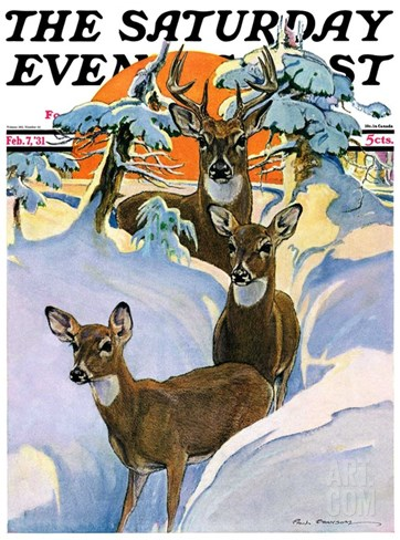 """Deer in Snow,"" Saturday Evening Post Cover, February 7, 1931 Stretched Canvas Print"