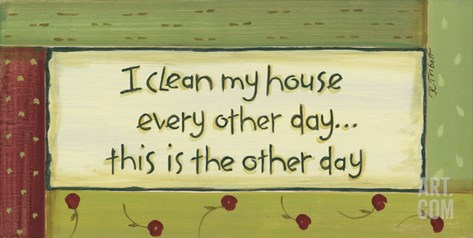 I Clean My House Stretched Canvas Print