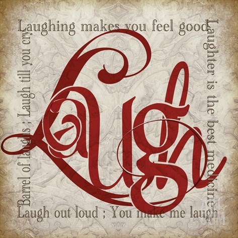 Laugh and Other Sentiments Stretched Canvas Print