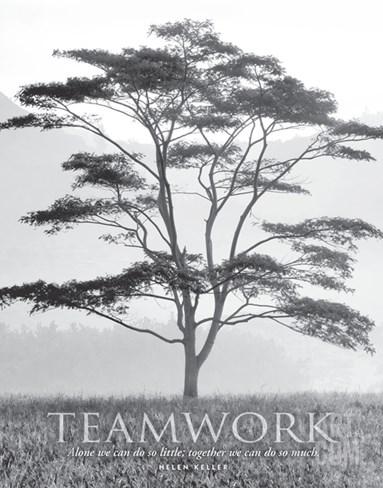 Teamwork Stretched Canvas Print
