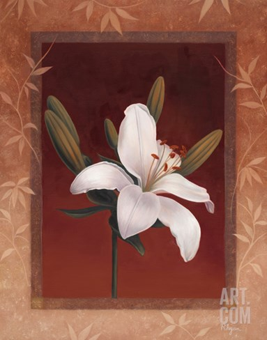 Tiger Lily Stretched Canvas Print